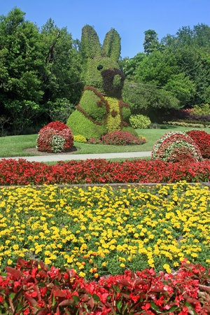 topiary: A large bunny topiary in beautiful gardens