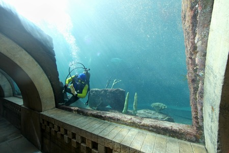 A diver swimming and cleaning a tank Stock Photo