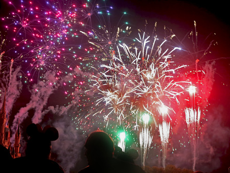 ORLANDO, FLORIDA - March 4, 2015 - The finale of the Wishes fireworks at Magic Kingdom, Walt Disney World.