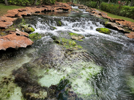 A stream with small waterfall and rocks