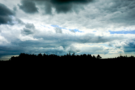 Stormy clouds and a forest in silhouette Stok Fotoğraf