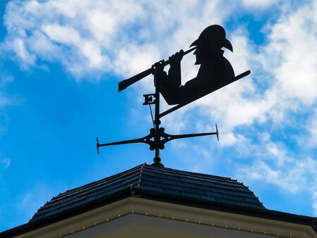 A Weather Vane with person looking through a telescope