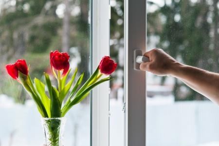 double glazing: window with mosquito net Stock Photo