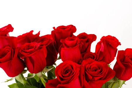 roses rouges: bouquet de roses rouges Banque d'images