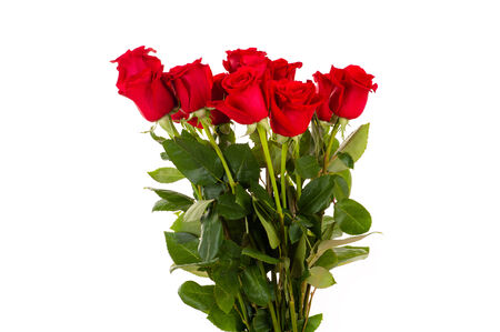 rosas rojas: ramo de rosas rojas