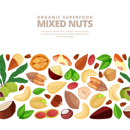 Mixed nuts vector horizontal seamless white background. Cartoon flat illustration. Design elements for packaging or label.