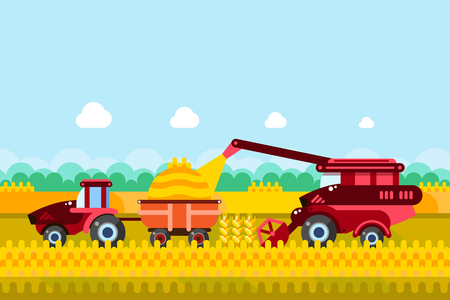 Farming and agriculture harvesting concept. Vector flat illustration of combine and tractor on wheat or corn cereal field. Rural farmland landscape background.