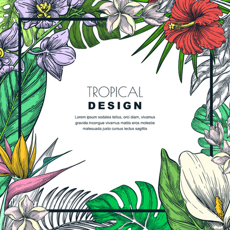 Tropical frame with green palm leaves and orchid, hibiscus, strelitzia, plumeria, calla, lily flowers. Vector hand drawn sketch illustration. Poster, banner or greeting card template.