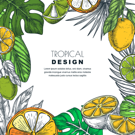 Tropical square frame with green palm leaves, lemon, lime, orange. Vector hand drawn sketch illustration of jungle exotic plants and citrus fruits. Poster, banner or greeting card template.