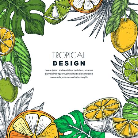 Tropisch vierkant frame met groene palmbladeren, citroen, limoen, sinaasappel. Vector hand getrokken schets illustratie van jungle exotische planten en citrusvruchten. Poster, spandoek of wenskaartsjabloon.