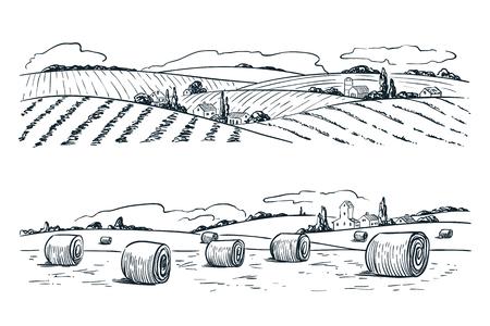 Landbouw velden landschap, schets vectorillustratie. Landbouw en oogst vintage achtergrond. Landelijk uitzicht op de natuur.