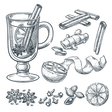 Mulled wine recipe, vector sketch illustration. Set of isolated hand drawn spices, ingredients. Hot alcohol drinks menu design elements.