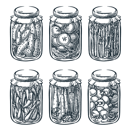 Pickled vegetables and mushrooms in glass jar, vector sketch illustration. Home made preserves hand drawn design elements.