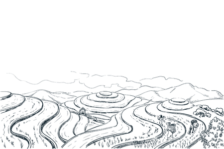 Rice terrace fields, vector sketch landscape illustration. Asian harvesting agriculture vintage background. China rural nature view. Çizim