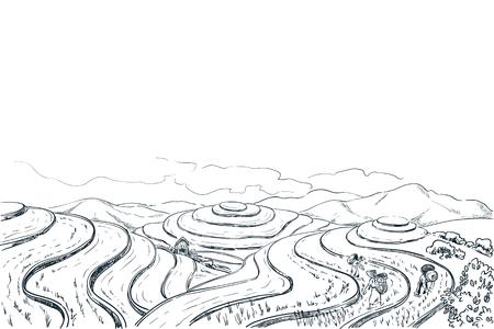 Rijst terras velden, schets landschap vectorillustratie. Aziatische oogst landbouw vintage achtergrond. China landelijke natuur weergave.