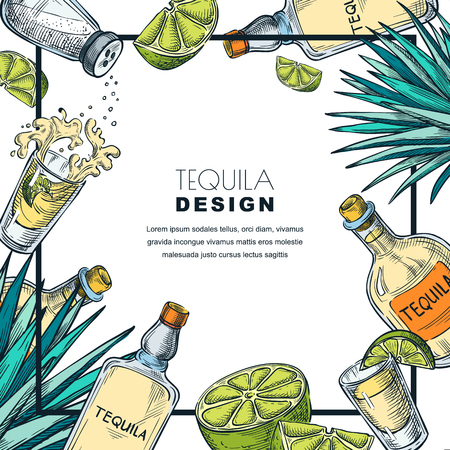 Tequila label design template. Sketch vector illustration of bottles, shot glass, lime and agave. Bar menu white frame background.