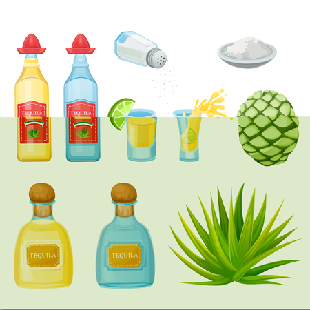 Tequila bottles, shot glass, salt and agave root ingredients, vector cartoon illustration. Mexican alcohol drinks and cocktails menu design elements.