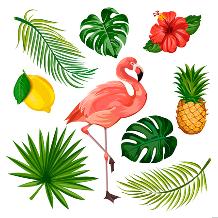 Summer tropical design elements set, isolated on white background. Vector cartoon illustration of flamingo, palm leaves, pineapple, lemon and exotic flowers.