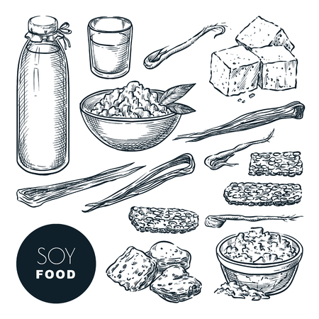 Soy food vegetarian products sketch vector illustration. Soy milk, tofu, sprouts, meat. Hand drawn isolated design elements.