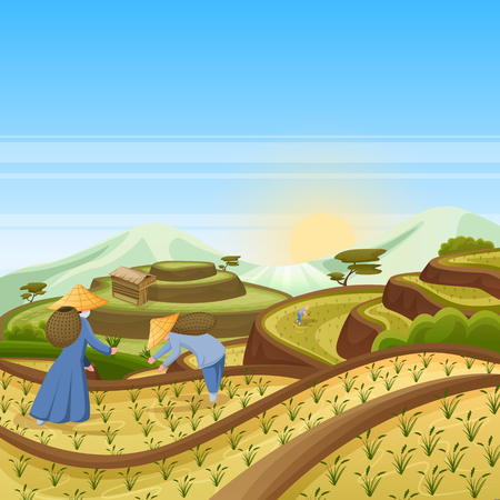 Asian landscape background with green rice terrace fields. People harvest rice in field. Harvesting and agriculture vector cartoon illustration.