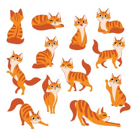 Rote süße Katze in verschiedenen Posen. Flache Illustration der Vektorkarikatur. Lustige verspielte Miezekatze lokalisiert auf weißem Hintergrund.