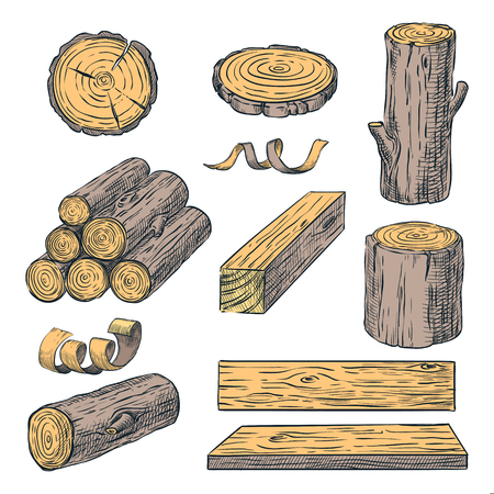 Wood logs, trunk and planks, vector color sketch illustration. Hand drawn wooden materials isolated on white background. Firewood set.