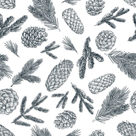 Pine branches and cones black white seamless pattern. Hand drawn spruce coniferous forest elements on white background. Vector sketch illustration. Winter, autumn design for fashion textile prints.