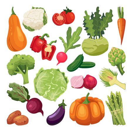 Farm fresh vegetables set. Vector flat cartoon illustration. Isolated broccoli, pumpkin, asparagus, artichoke, kohlrabi. Autumn farming and harvesting design elements.