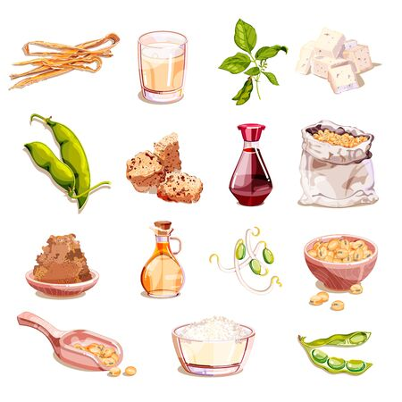 Soybean and soy food vector cartoon illustration. Vegetarian products icons and design elements. Soy milk, tofu, sprouts, meat, isolated on white background.