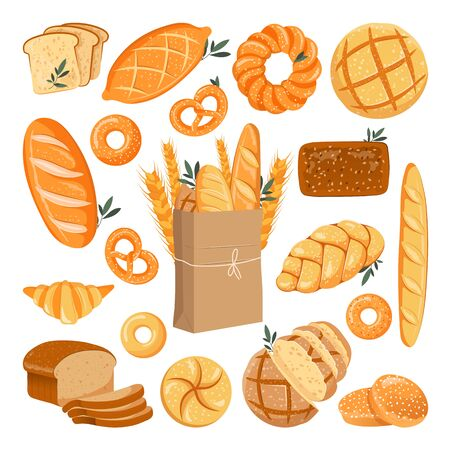 Fresh baked grain bread set. Vector flat cartoon illustration. Rye and wheat buns, loaf, bagel and baguette. Bakery design elements, isolated on white background. Vector Illustration