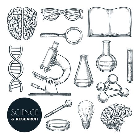 Science lab and chemistry research sketch vector illustration. Isolated hand drawn education icons set. Human brain, dna and laboratory equipment collection for chemical experiments. Imagens - 131765756