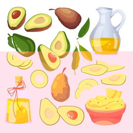Green fresh avocado on branch, fruits slices and avocado oil. Vector flat cartoon illustration. Isolated vegetable icons and design elements.