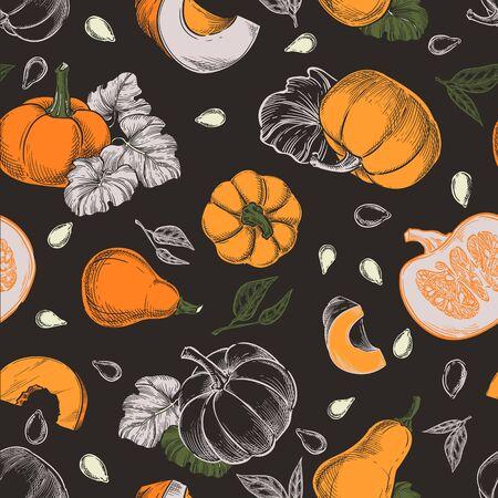 Colorful pumpkins vector seamless pattern. Sketch hand drawn illustration. Autumn gourd harvest, seeds, farm food package black background. Иллюстрация