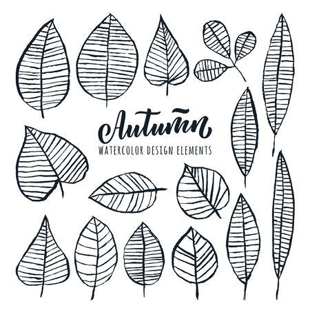 Autumn hand drawn calligraphy lettering and watercolor leaves set, isolated on white background. Vector doodle sketch illustration. Fall nature design elements. Ilustracja
