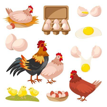 Granja avícola y huevos frescos iconos. Gallina, gallo y pequeños elementos de diseño de pollo, aislados sobre fondo blanco. Ilustración de dibujos animados plano de vector.