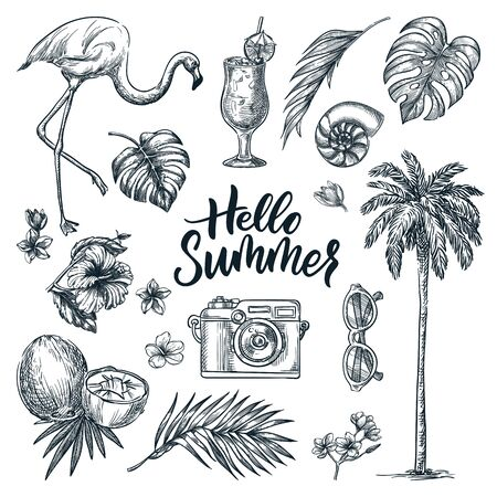 Hello summer calligraphy lettering and tropical design elements set. Vacation, sea beach holiday hand drawn icons, isolated on white background. Vector doodle sketch illustration. Illusztráció