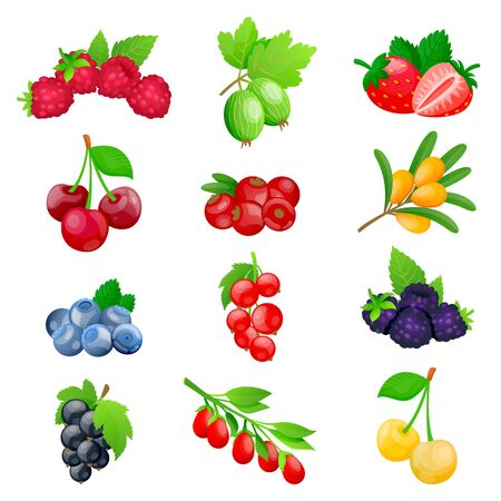 Juicy berries and fruits icon collection. Vector flat cartoon illustration. Fresh cherry, strawberry, cranberry, blackberry, strawberry isolated on white background. Healthy sweet food design elements