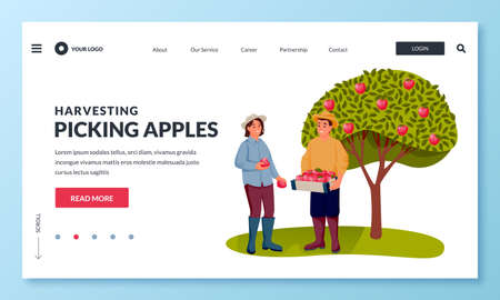 Fall harvesting and agriculture farming concept. Happy young man and woman picking ripe red apples into basket in fruit garden. Vector flat cartoon people characters illustration