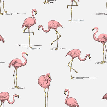 Tropical seamless pattern. Pink flamingo on white background. Vector color hand drawn sketch illustration. Summer fabric design, wrapping paper, trendy fashion textile print
