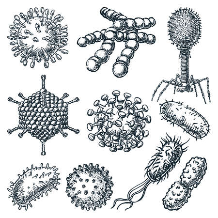 Viruses and bacterium set isolated on white background. Hand drawn vector sketch illustration. Hepatitis, rotavirus, coronavirus, Koch bacillus, HIV and streptococcus disease icons