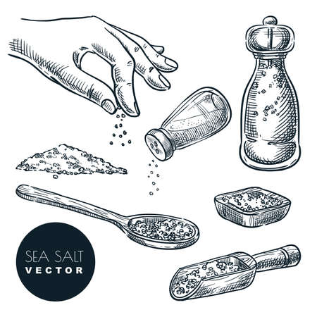 Sea salt sketch vector illustration isolated on white background. Natural ingredient, seasoning spice. Hand drawn design elements.