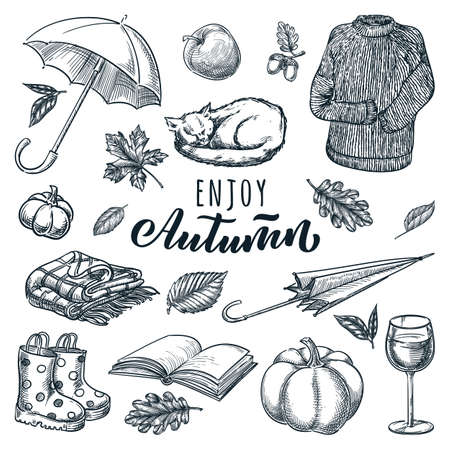 Autumn cozy design elements collection. Vector sketch illustration and hand drawn calligraphy lettering. Umbrella, sleeping cat, wine, sweater, pumpkin and book isolated on white background