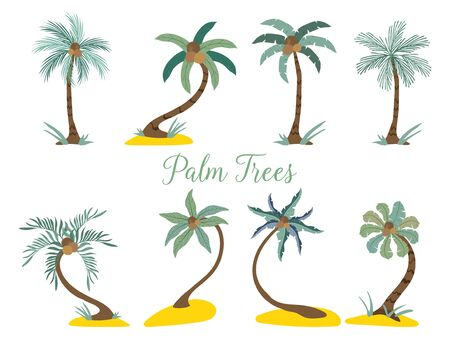 Different type palm trees on the beach. Vector illustration isolated on white. Illusztráció