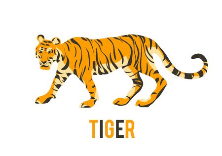 Red tiger. Vector isolated animal.