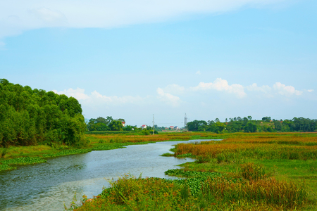 Tranquil scenery in the wetlands with a cloudy sky Stock Photo