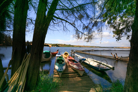 dugout: Dugout canoes on the lake