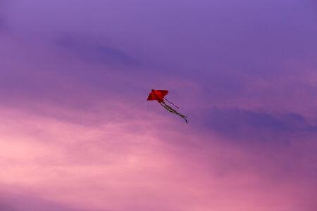 Kite with sunset photo