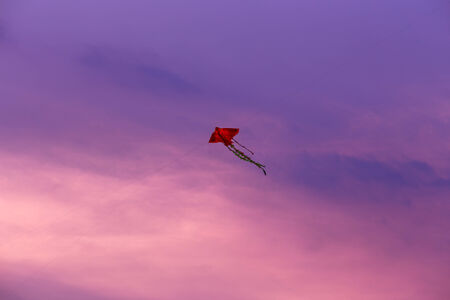 Kite with sunset photo