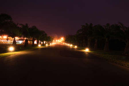 color silence: Road with in night footlights