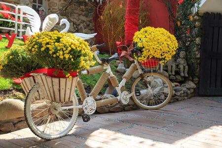 bicycle and flowers photo